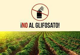 glifosato-fuente-ecoportalnet