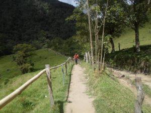 sendero-valle-del-cocora