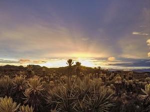 paramo-del-sol-turismo-en-antioquia