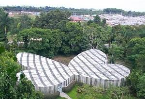 El-Jardín-Botánico-del-Quindío