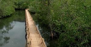 Parque-Nacional-Natural-de-Utría-en-el-choco