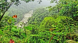 Parque-Nacional-Natural-los-Katíos