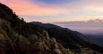 Parque-Cordillera-de-Los-Picachos